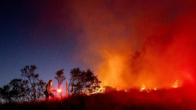 Firefighter Daniel Abarado lights a backfire while working to contain the Crews Fire from near Gilroy, Calif., on Sunday, July 5, 2020. (AP Photo/Noah Berger)