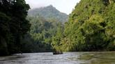 Petugas membawa Harimau Sumatra liar yang diberi nama IDA dengan menggunakan perahu untuk proses pelepasliaran di kawasan Taman Nasional Gunung Leuser (TNGL) yang berdampingan dengan Kawasan Ekosistem Leuser, Provinsi Aceh.