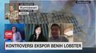VIDEO: Kontroversi Ekspor Benih Lobster