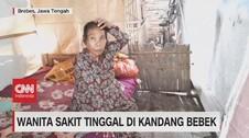 VIDEO: Wanita Sakit Tinggal di Kandang Bebek