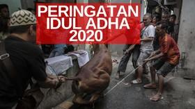 VIDEO: Menag Izinkan Solat Iduladha dan Sembelih Hewan