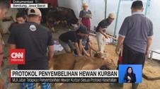 VIDEO: Protokol Penyembelihan Hewan Kurban