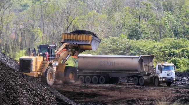 PT Bukit Asam (Persero) Tbk atau PTBA memiliki dua opsi pengembangan proyek batu bara menjadi metoksimetana (dimethyl ether/DME) untuk mengurangi impor LPG.