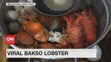 VIDEO: Menikmati Bakso Lobster & Bakso Kelapa Muda yang Unik