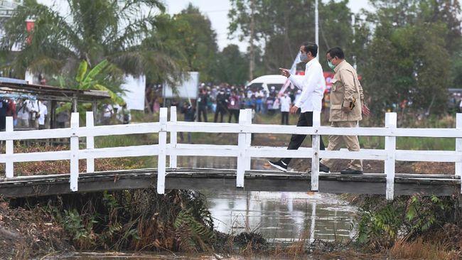 Presiden Joko Widodo (kiri) didampingi Menteri Pertahanan Prabowo Subianto meninjau lahan yang akan dijadikan Food Estate atau lumbung pangan baru di Kapuas, Kalimantan Tengah, Kamis (9/7/2020). ANTARA FOTO/Hafidz Mubarak A/nz