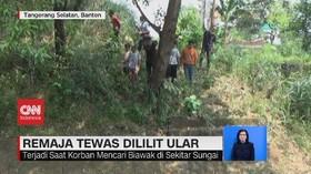 VIDEO: Remaja di Tangsel Tewas Dililit Ular Sanca