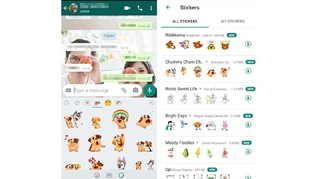 Cara Pakai Animated Stickers Whatsapp yang Resmi Meluncur