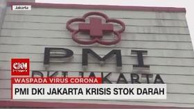 VIDEO: PMI DKI Jakarta Krisis Stok Darah