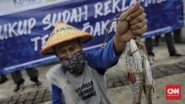 Pedemo Reklamasi Ancol Bawa Ikan Busuk ke Kantor Anies