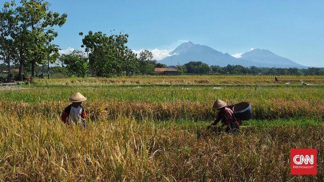 Gubernur Jabar Ridwan Kamil ingin ada 100 ribu petani milenial hingga masa jabatannya berakhir di 2023.