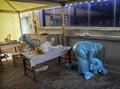Salip Brasil, Kasus Corona India Kini Urutan Kedua Dunia