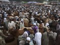FOTO: Upaya Pakistan Menjinakkan Covid-19 Jelang Idul Adha