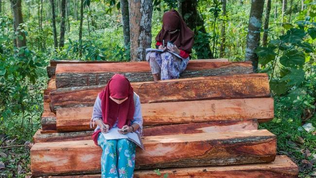 12 Ribu Desa Tak Dapat Internet, Pengamat Dorong Pemerataan
