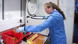 RI Minta Teknis Sistem Penyimpanan Vaksin Corona ke Covax