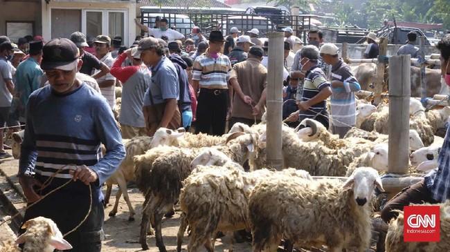 Pasar Hewan Ambarawa di Jawa Tengah tetap ramai di masa pandemi. Namun tak ada penerapan protokol kesehatan di sini.