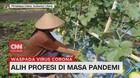 VIDEO: Alih Profesi di Masa Pandemi