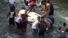 VIDEO: Warga Selamatkan Sapi Dari Dasar Sungai