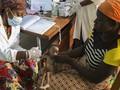 FOTO: Terjebak Pandemi dan Konflik Bersenjata di Burkina Faso