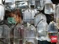 FOTO: Berburu Ikan Hias Kala Pandemi Covid-19