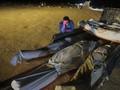 Update Corona Global: Sudah Lampaui 18 Juta Kasus