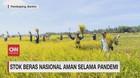 VIDEO: Stok Beras Nasional Aman Selama Pandemi Covid-19