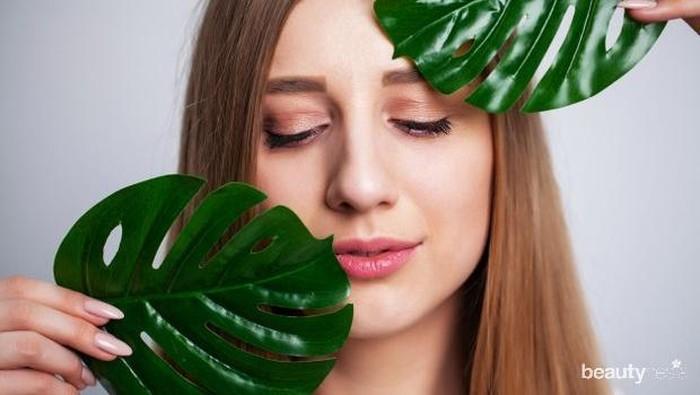 Rekomendasi 5 Skincare Vegan, Lebih Ramah Lingkungan!