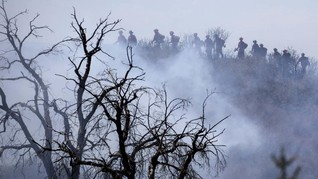 FOTO: Kebakaran Hutan 'Apple Fire' di California