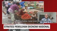 VIDEO: Strategi Pemulihan Ekonomi Nasional (2/5)