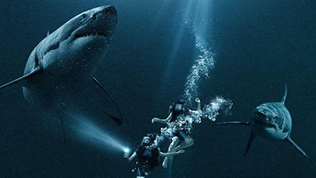 Bioskop Trans TV malam ini, Kamis (12/11), akan menayangkan 47 Meters Down pada pukul 21.30 WIB. Berikut sinopsis film 47 Meters Down.