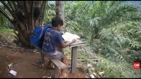 VIDEO: Belajar di Atas Pohon Demi Sinyal Internet