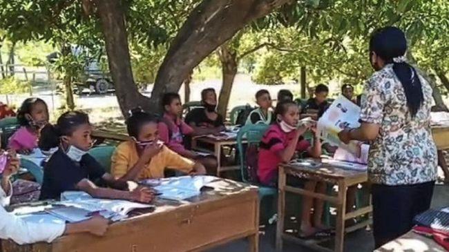 Sejumlah pelajar belajar di pohon karena tidak ada internet untuk belajar di rumah dan tidak boleh belajar di ruang kelas sekolah.
