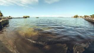 Anggota DPRA Ungkap Tumpahan Minyak di Perairan Langsa Aceh