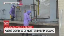 VIDEO: Kasus Covid-19 di Klaster Pabrik Udang Situbondo