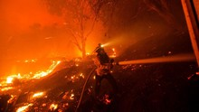 FOTO: Pemadaman Karhutla saat Gelombang Panas di California