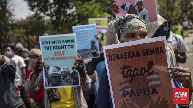 Peneliti menilai kekerasan di Papua sebenarnya merupakan efek domino yang harus diselesaikan dari hulu ke hilir.