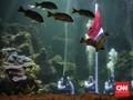 FOTO: Gladi Resik Pengibaran Merah Putih di Dalam Air