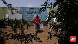 Kampung Akuarium Jadi Contoh, DKI Didesak Setop Penggusuran