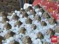 Hujan Es Landa Kota Bogor, Butiran Sebesar Batu Kerikil