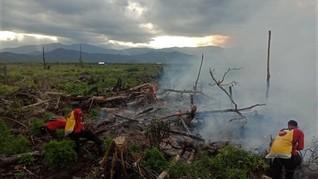 Masih Musim Hujan, Lahan Gambut di Sumsel Mulai Terbakar