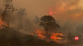 VIDEO: Kebakaran Berlanjut California, Ratusan Hektare Hangus