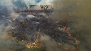 FOTO: Kebakaran Hutan Amazon Tak Kunjung Padam