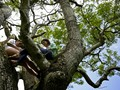 FOTO: Ikhtiar Pelajar El Savador untuk Belajar Jarak Jauh