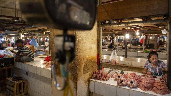 GPMT mengatakan wacana impor pakan ternak dan ayam dari Brasil akan berdampak pada petani jagung dan peternak ayam lokal.