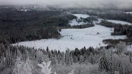Jalur Pendakian di Rusia Menyibak Misteri Hutan Dua Kosmonaut