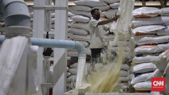 Dirut Bulog Budi Waseso menunggu restu pemerintah menyulap beras sisa impor yang turun mutu menjadi tepung terigu.