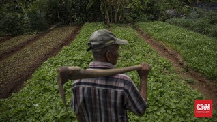 Menabur Benih Persahabatan Petani dan Dunia Digital