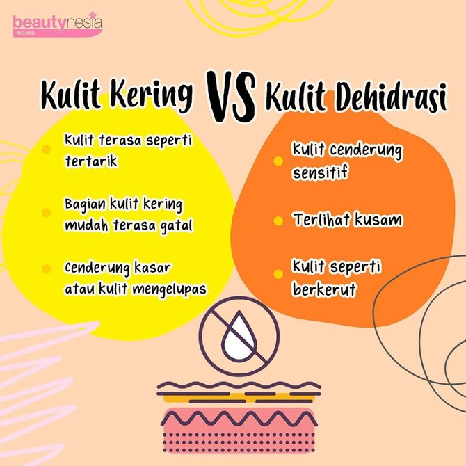 Infografis - Kulit kering vs kulit dehidrasi