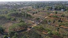 DKI Akan Buka Lahan Baru untuk Pemakaman Covid-19