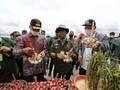 Kementan Siap Kembangkan 30 Ribu Hektar Lahan di Humbahas