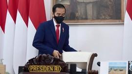 Jokowi Bakal Perluas Food Estate ke NTT dan Papua